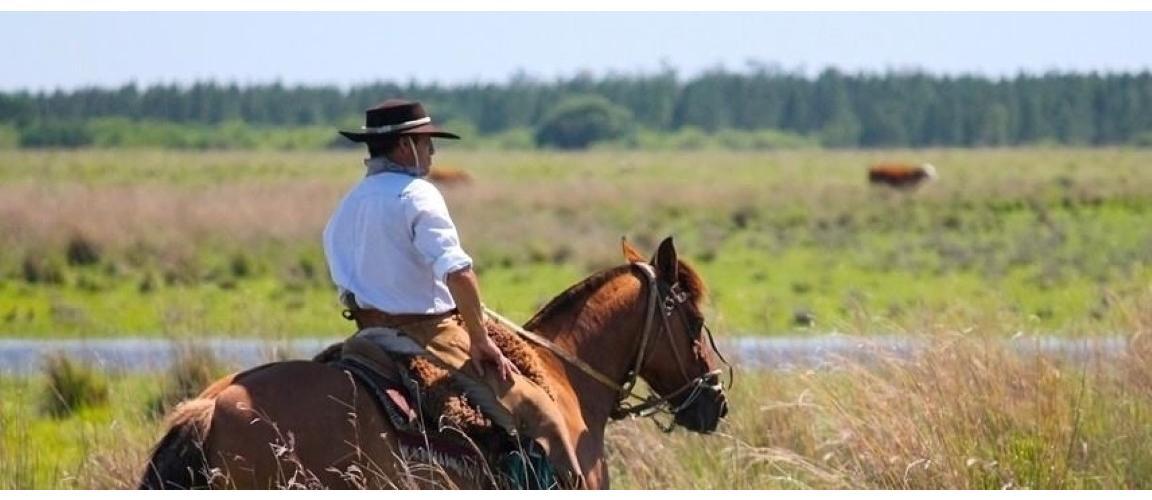 Casa - Gaucho Argentino - Experiencias cabalgatas ... - photo#27