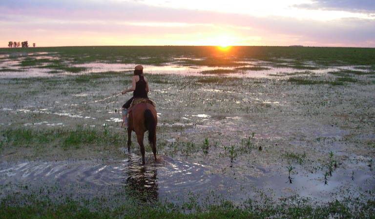 girl horse sunset swamp2