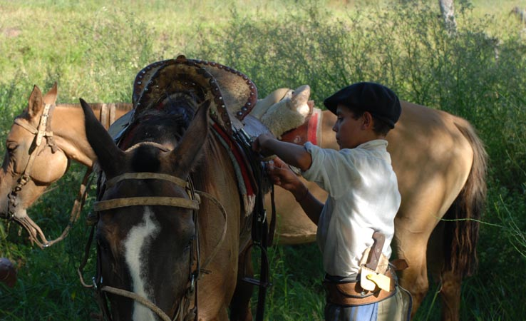 young gaucho saddling